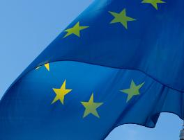 Nommée co-rapporteure d'une mission de défense et de sécurité de l'Union européenne