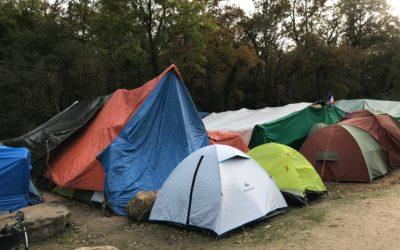 Hébergement d'urgence pour les sans abris | Lettre d'information Covid-19 #2